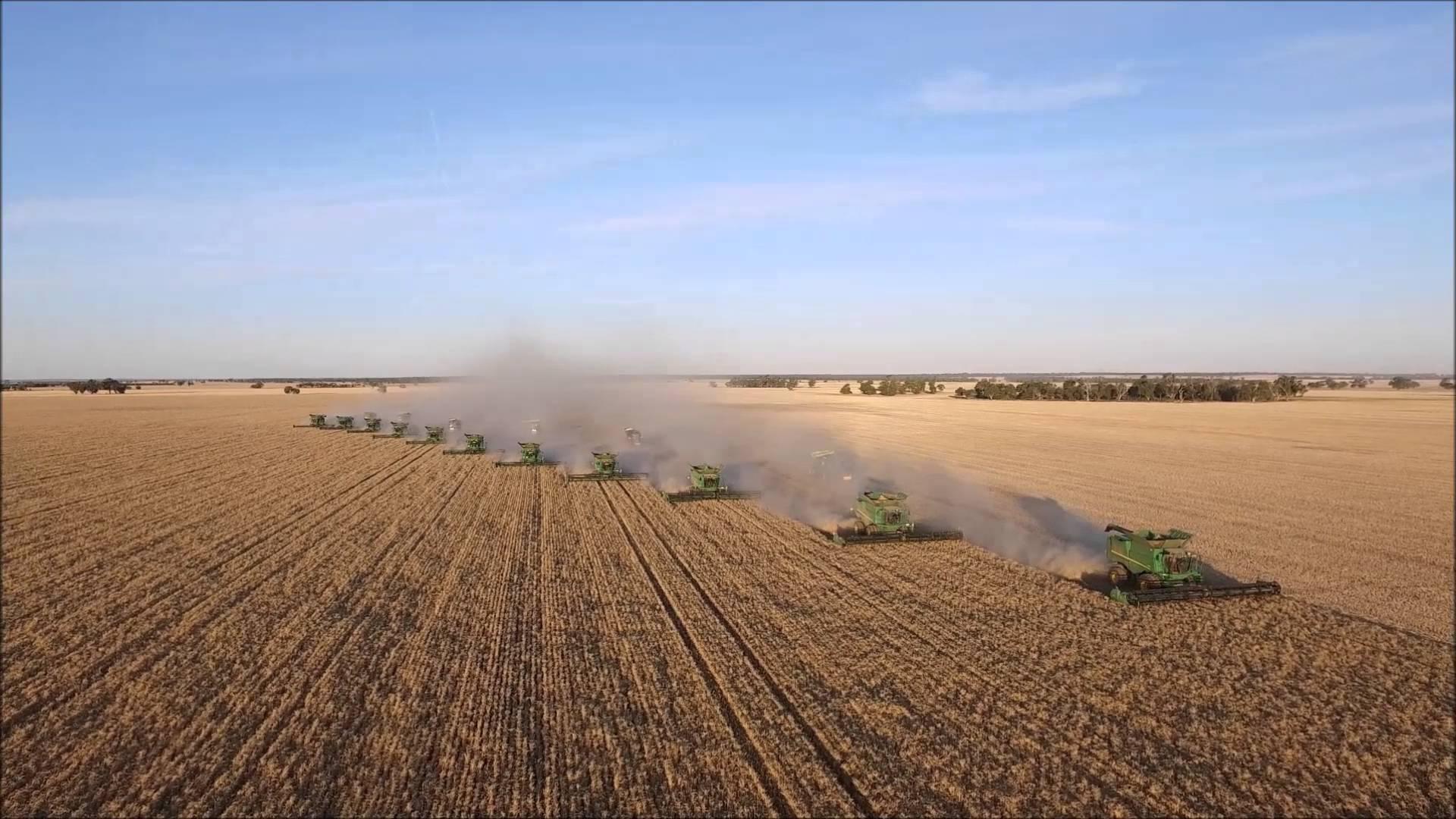 grain_farming