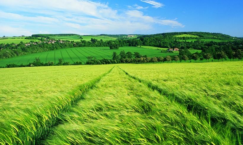OFRF Organic Farmer Survey Identifies Top Challenges